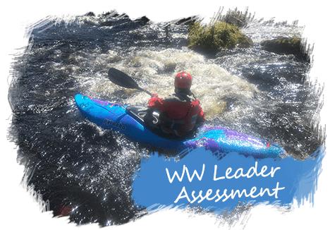 WW Leader Assessment